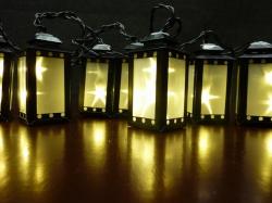 8 zwarte lantaans met starry foil kleur WARM WIT