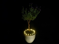 Plant LED verlichting met stekker WARM WIT
