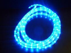 LED lichtslang 5 meter kleur BLAUW