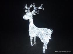 Rendier Staand | Led, Kerstverlichting, Verlichting | KERSTDECORATIE |