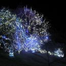 5 METER lichtsnoer met 50 WARM WITTE LED